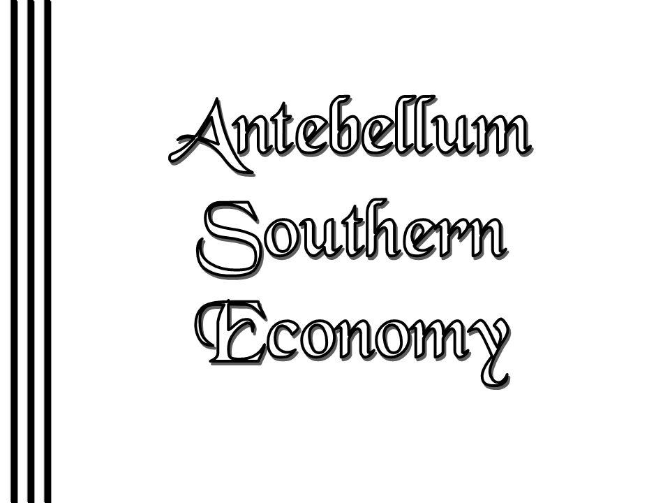Antebellum Southern Economy