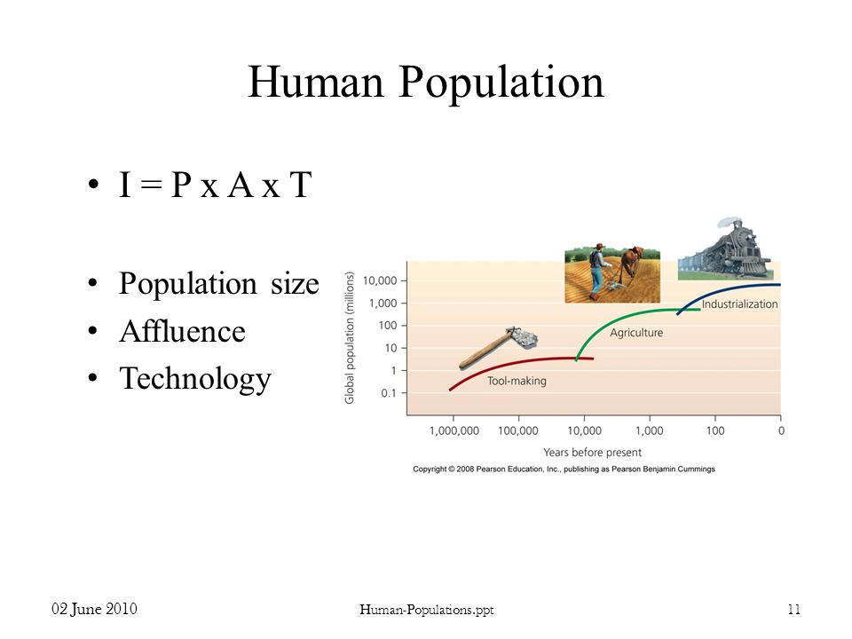 Human Population I = P x A x T Population size Affluence Technology