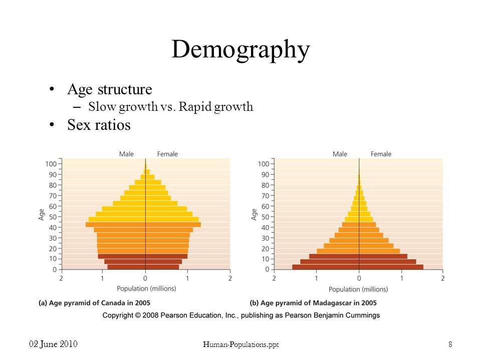 Demography Age structure Sex ratios Slow growth vs. Rapid growth