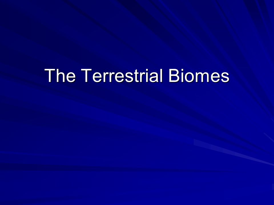 The Terrestrial Biomes