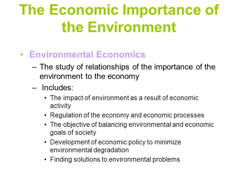 The Economic Importance of the Environment
