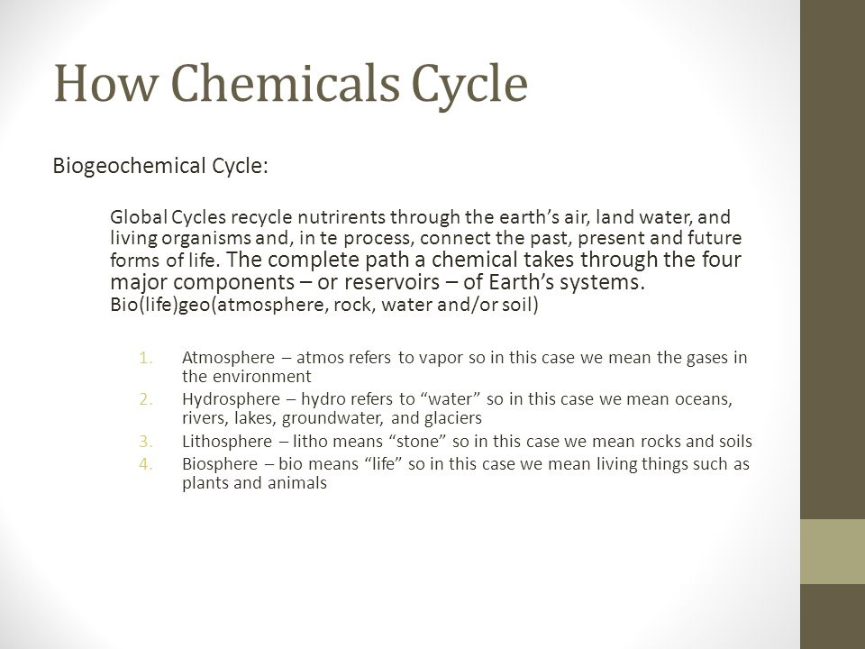 How Chemicals Cycle Biogeochemical Cycle:
