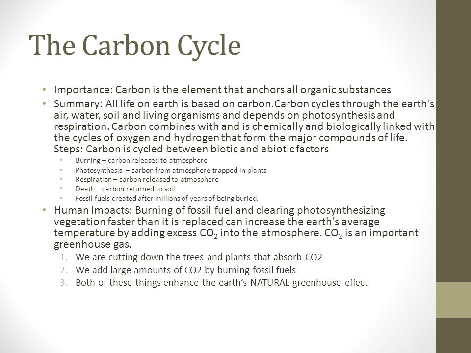 The Carbon Cycle Importance: Carbon is the element that anchors all organic substances.