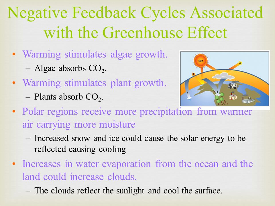 Negative Feedback Cycles Associated with the Greenhouse Effect