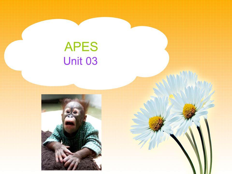 APES Unit 03