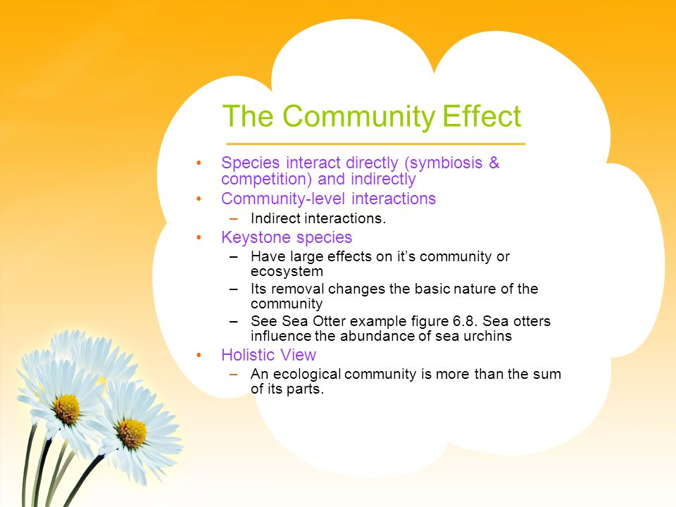 The Community Effect Species interact directly (symbiosis & competition) and indirectly. Community-level interactions.