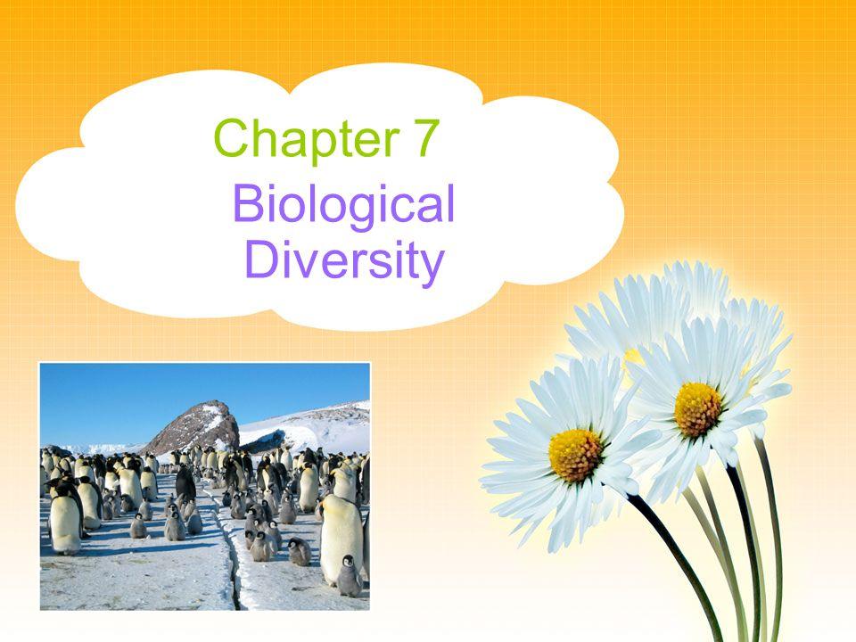 Chapter 7 Biological Diversity