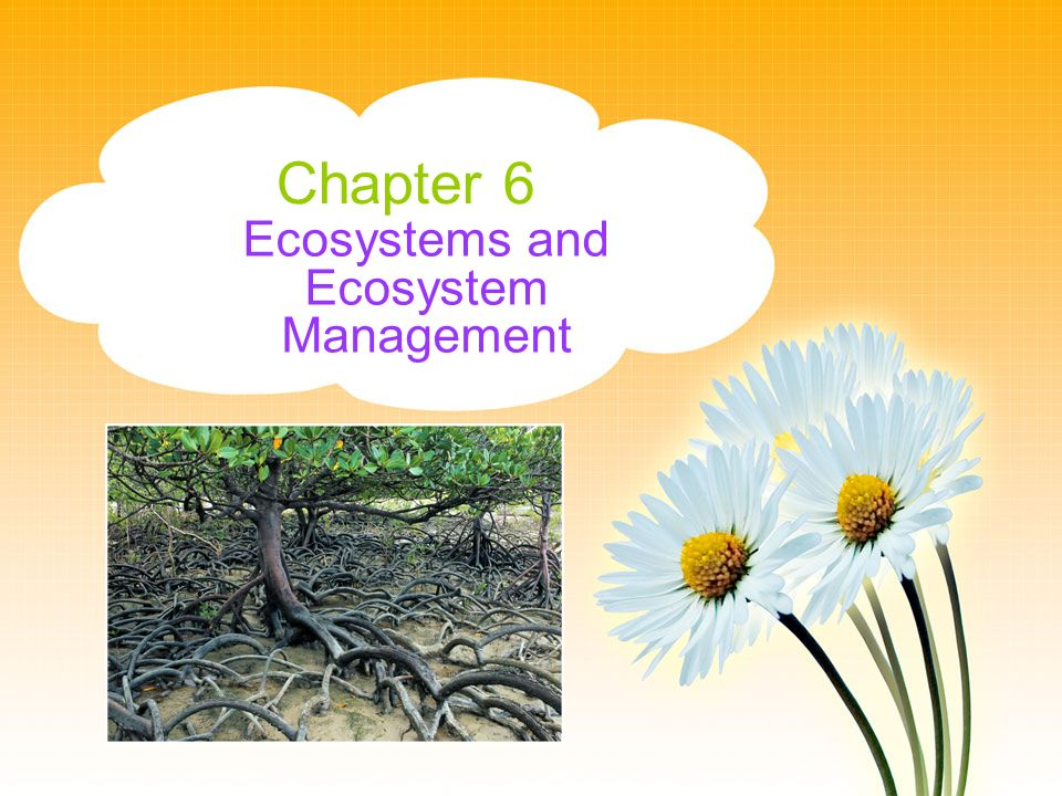Ecosystems and Ecosystem Management