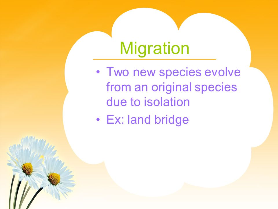 Migration Two new species evolve from an original species due to isolation Ex: land bridge