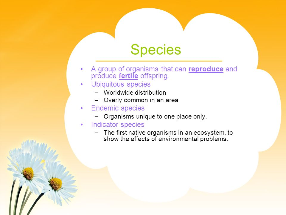 Species A group of organisms that can reproduce and produce fertile offspring. Ubiquitous species.