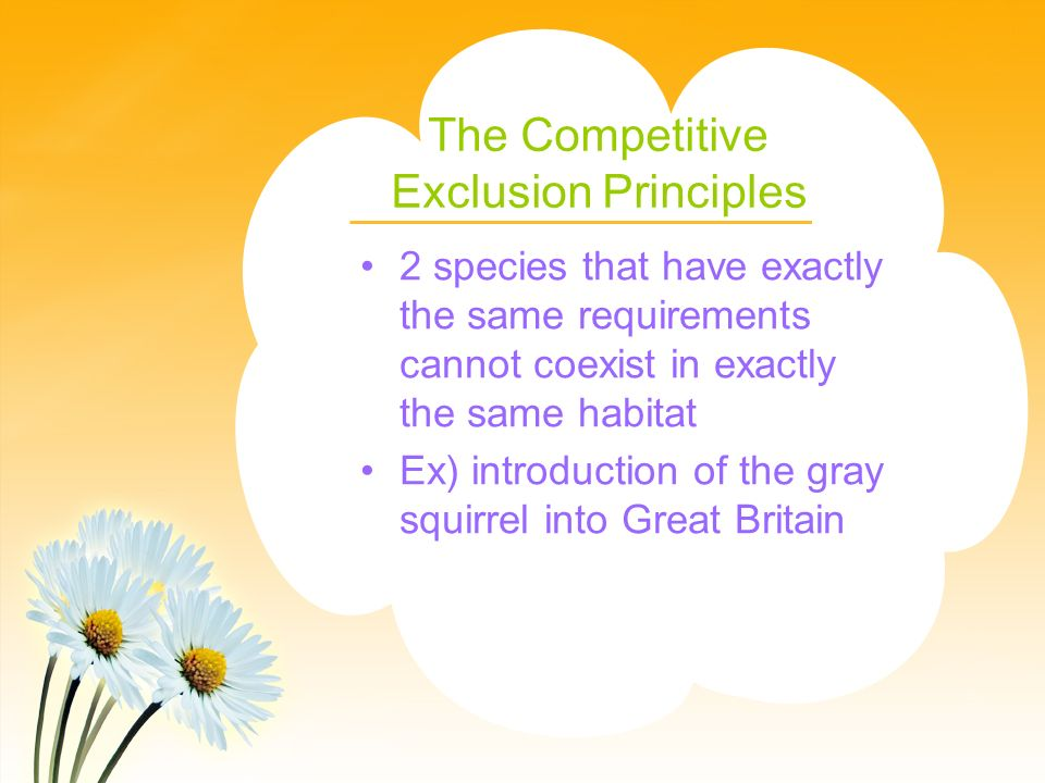 The Competitive Exclusion Principles