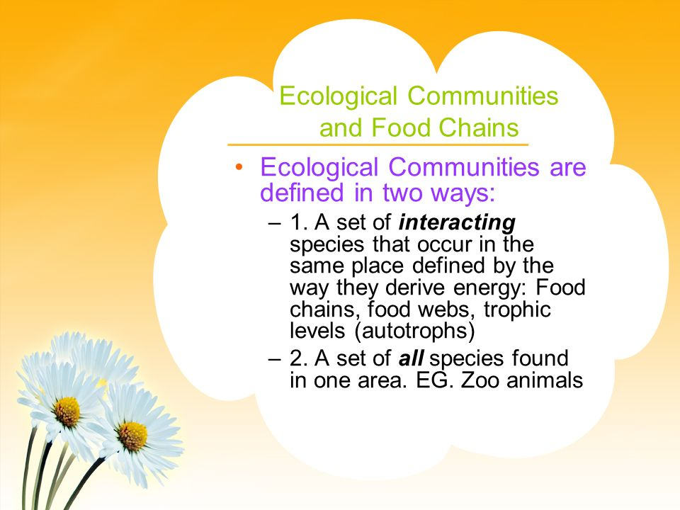 Ecological Communities and Food Chains