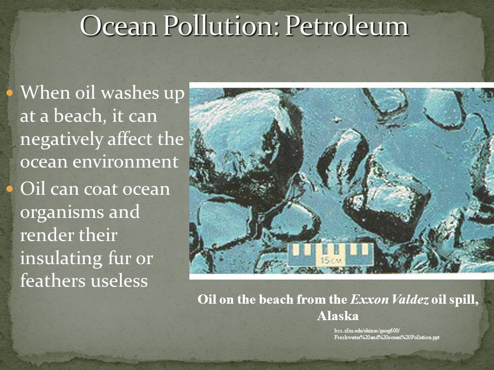 Ocean Pollution: Petroleum