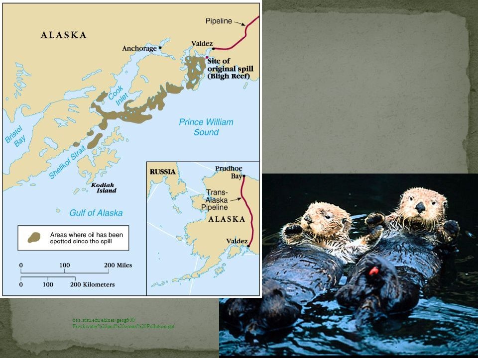 Exxon valdez spilled almost 11