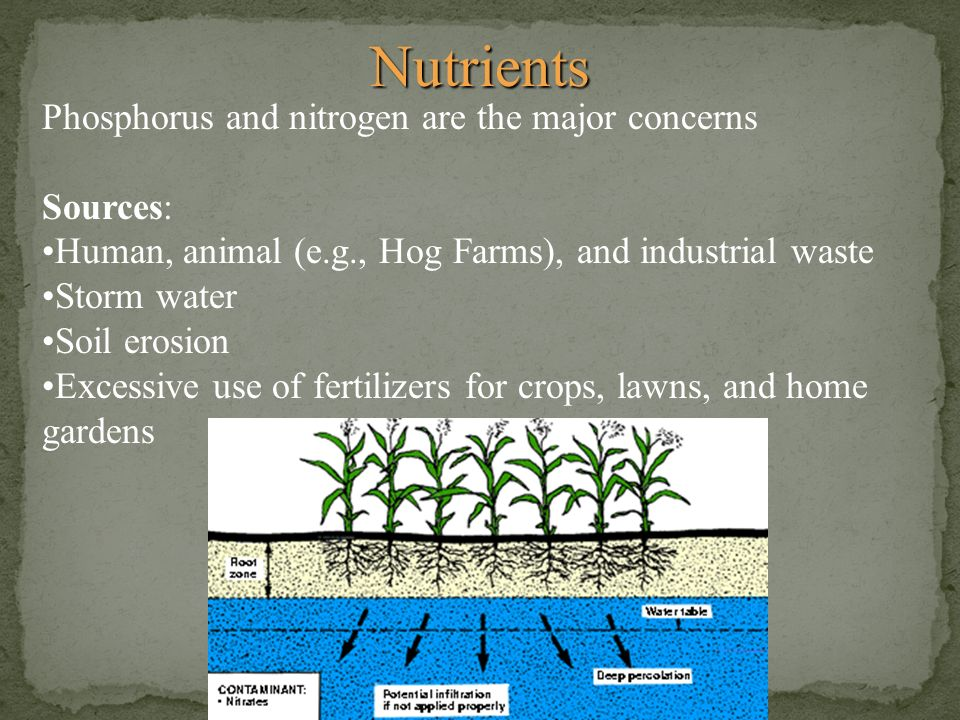 Nutrients Phosphorus and nitrogen are the major concerns Sources: