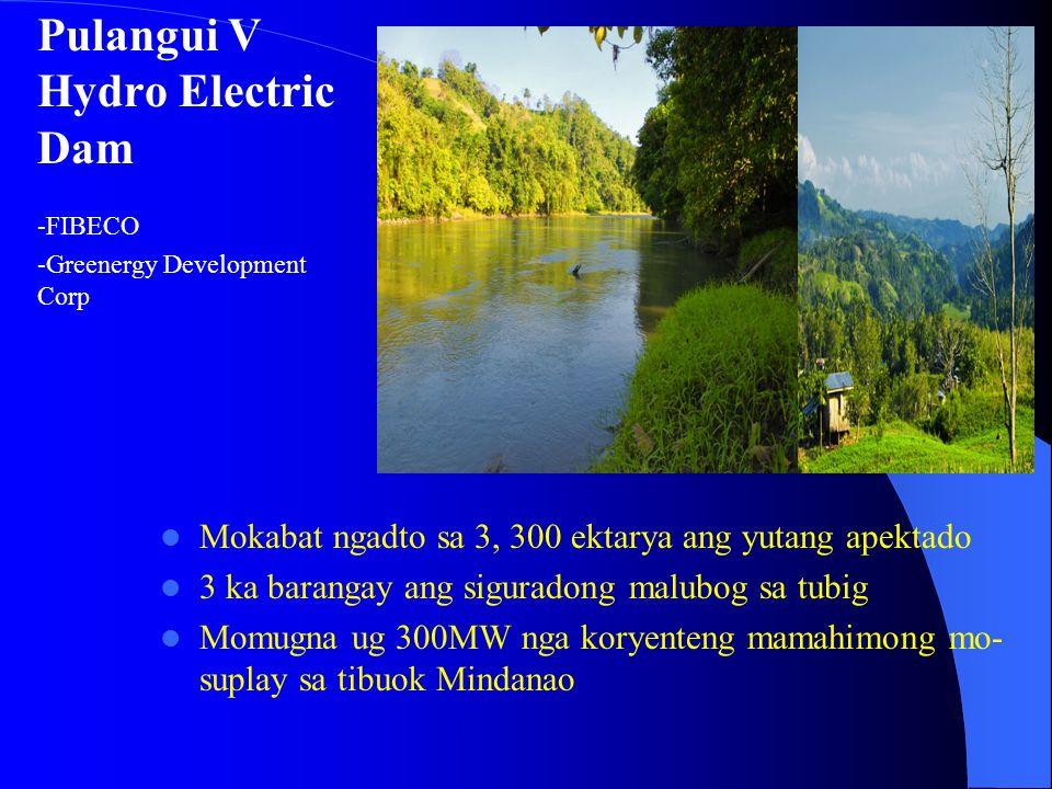 Pulangui V Hydro Electric Dam