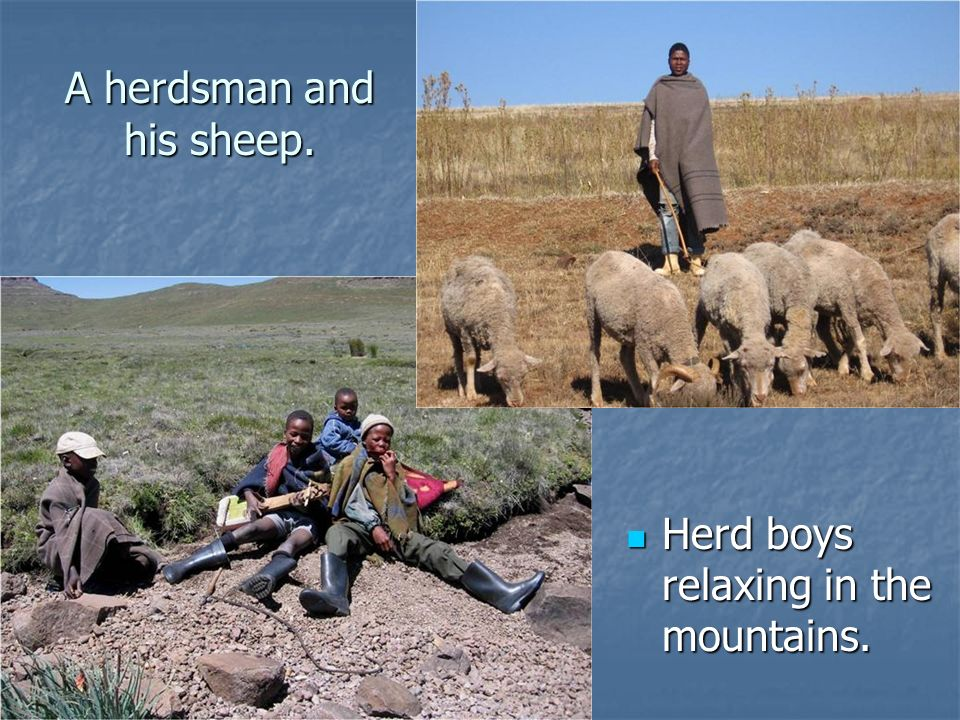 A herdsman and his sheep.