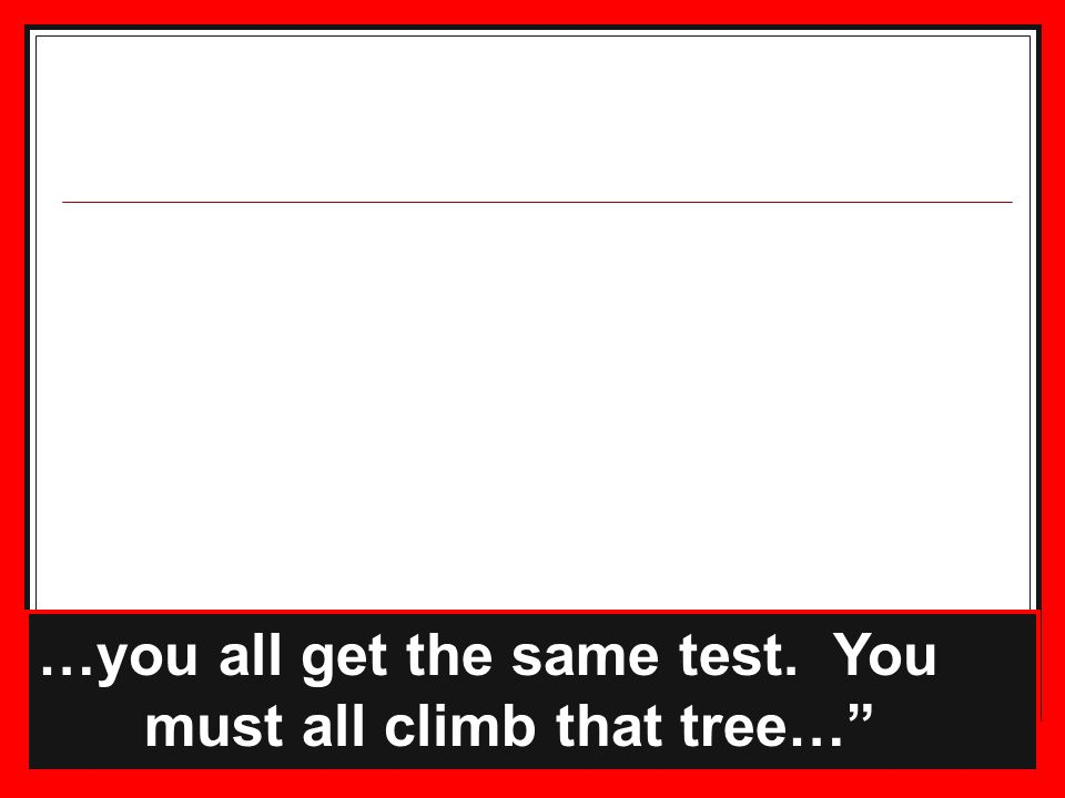 …you all get the same test. You must all climb that tree…