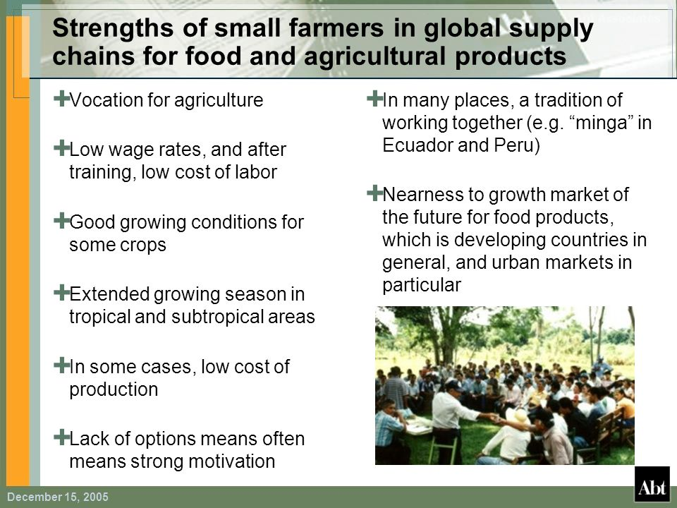 Strengths of small farmers in global supply chains for food and agricultural products