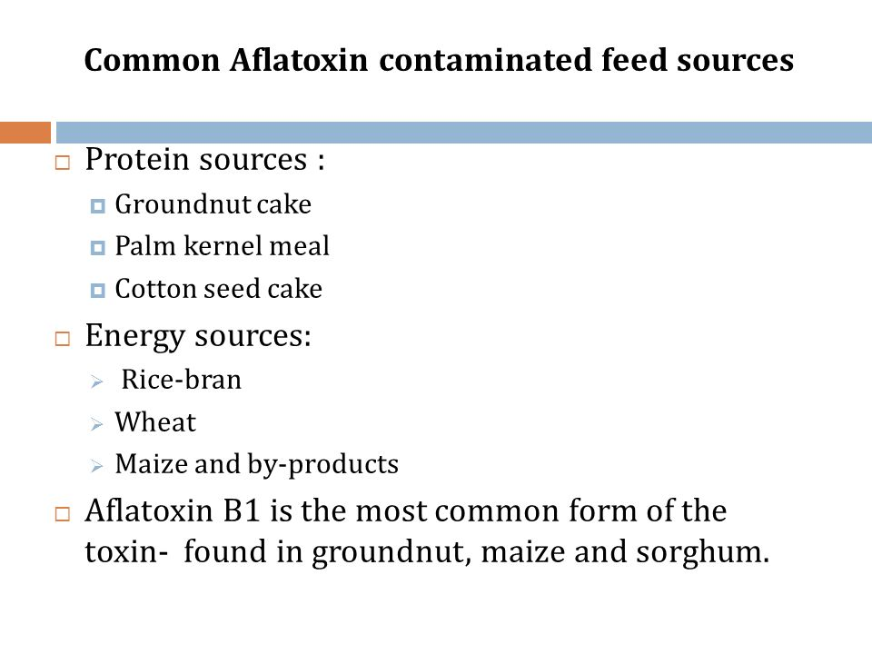 Common Aflatoxin contaminated feed sources