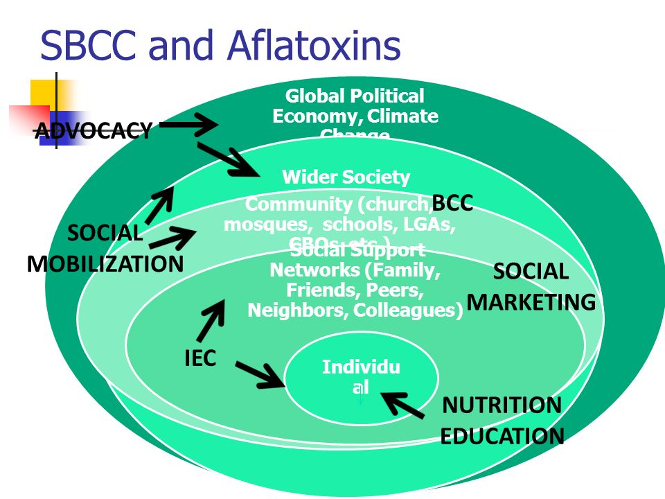 SBCC and Aflatoxins ADVOCACY SOCIAL MOBILIZATION SOCIAL MARKETING IEC