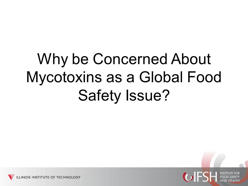 Why be Concerned About Mycotoxins as a Global Food Safety Issue