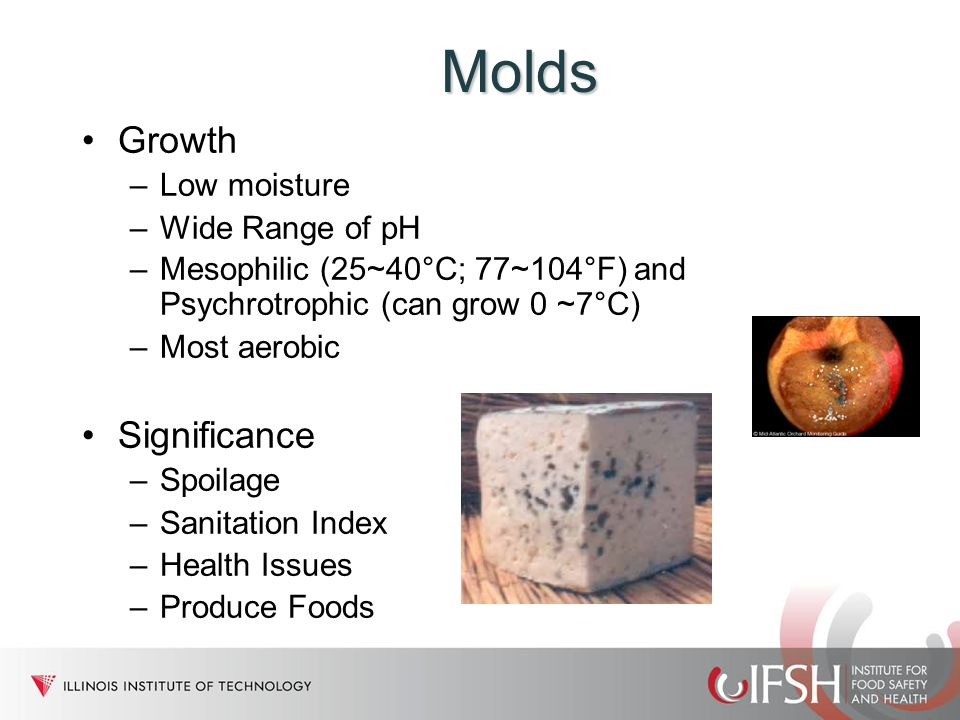 Molds Growth Significance Low moisture Wide Range of pH