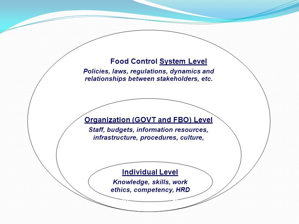 Food Food Control System Level
