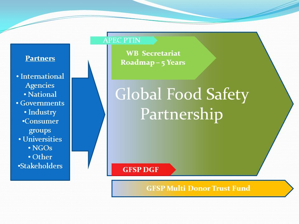 WB Secretariat Roadmap – 5 Years GFSP Multi Donor Trust Fund