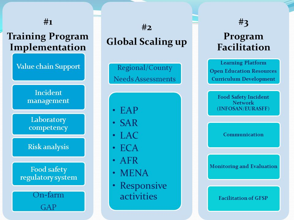 Training Program Implementation #2 Global Scaling up