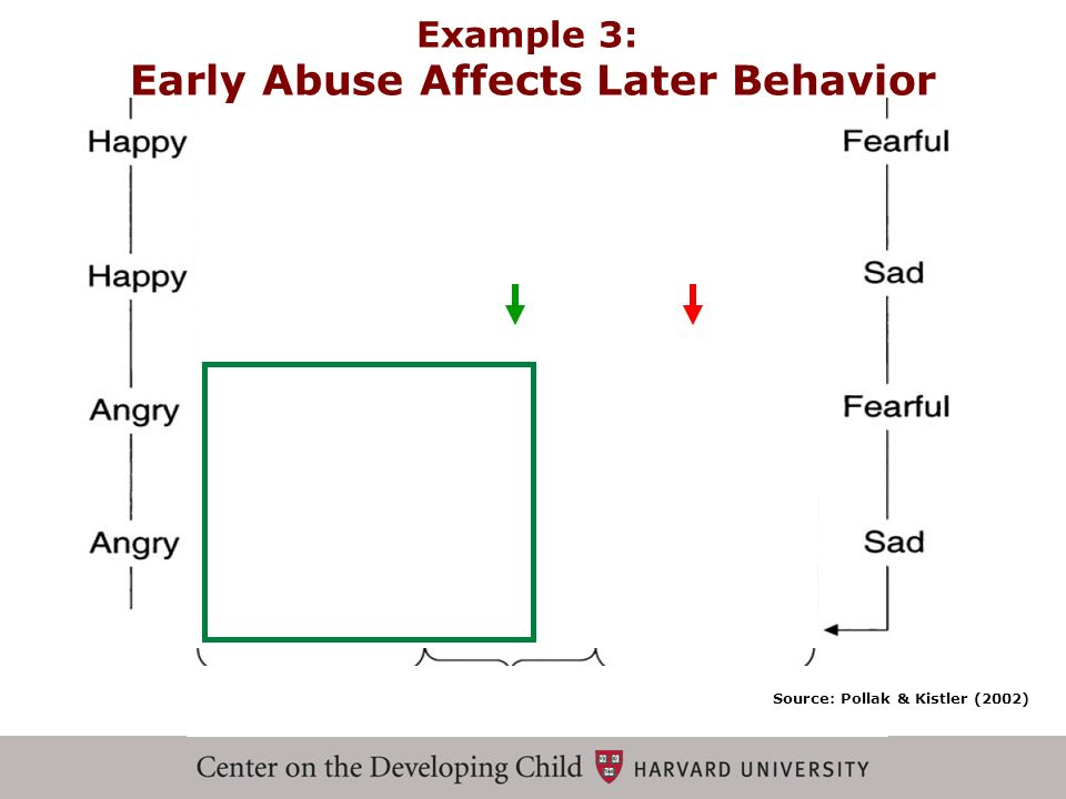 Early Abuse Affects Later Behavior