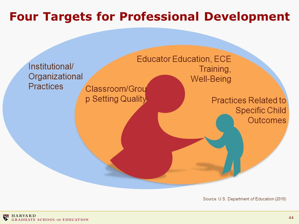 Four Targets for Professional Development