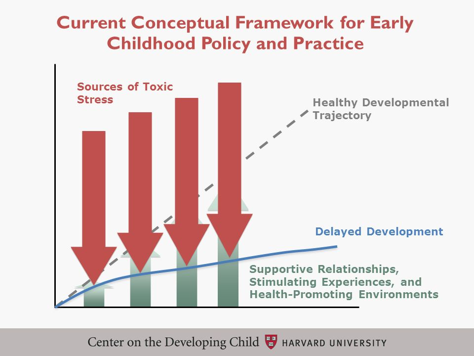 Current Conceptual Framework for Early Childhood Policy and Practice