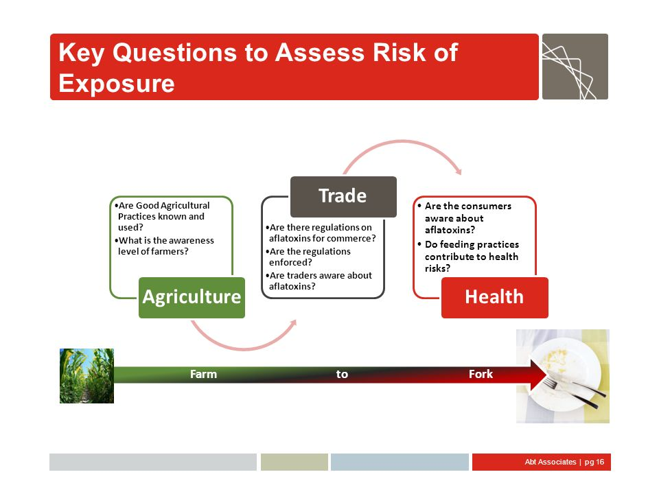 Key Questions to Assess Risk of Exposure