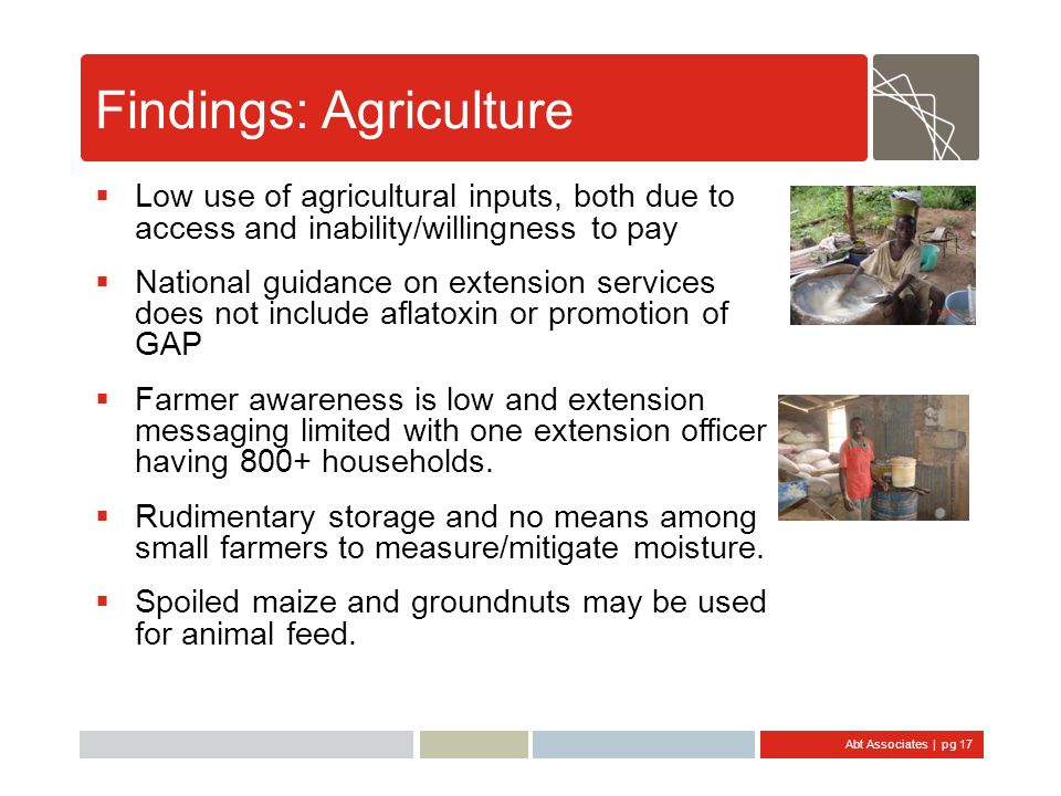 Findings: Agriculture