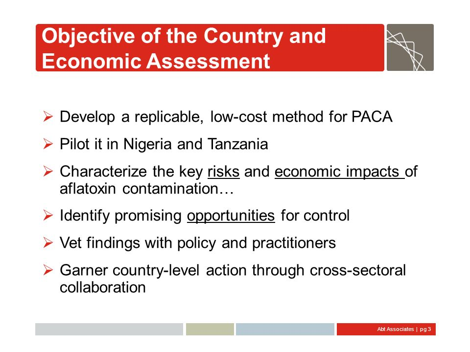 Objective of the Country and Economic Assessment
