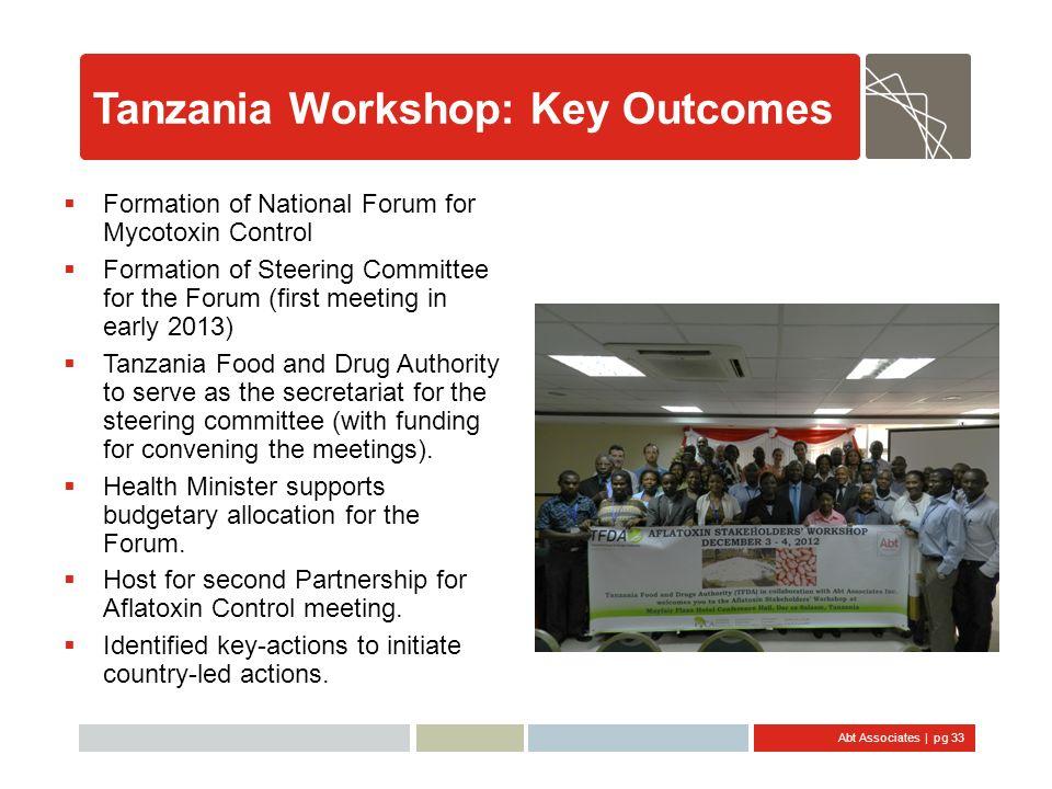 Tanzania Workshop: Key Outcomes