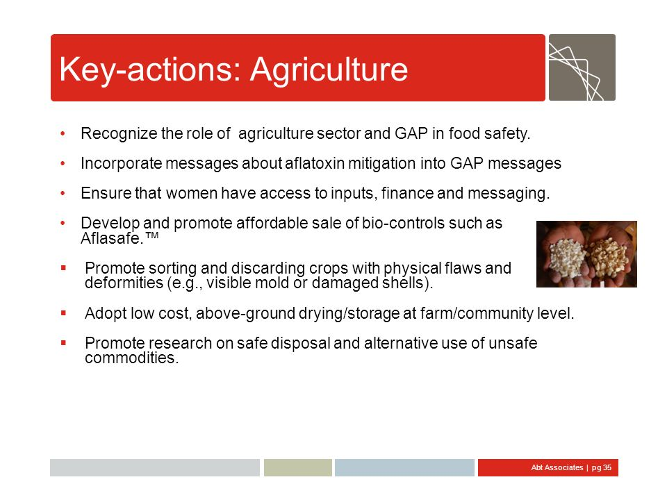 Key-actions: Agriculture