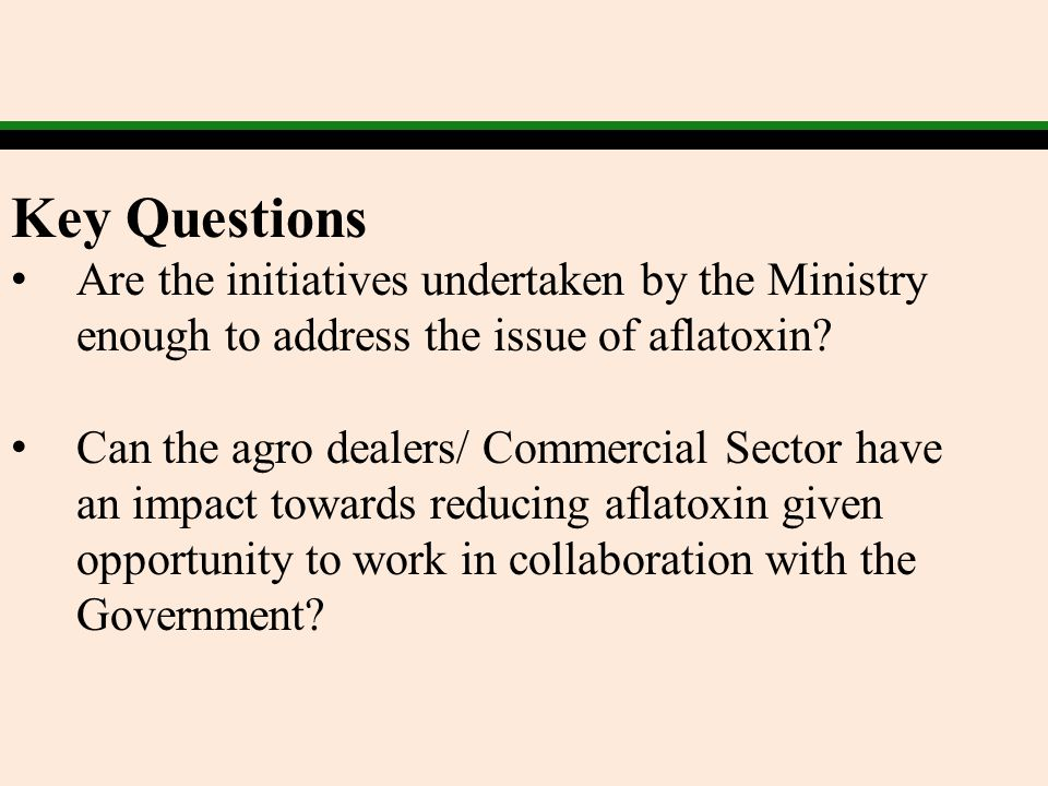 Key Questions Are the initiatives undertaken by the Ministry enough to address the issue of aflatoxin