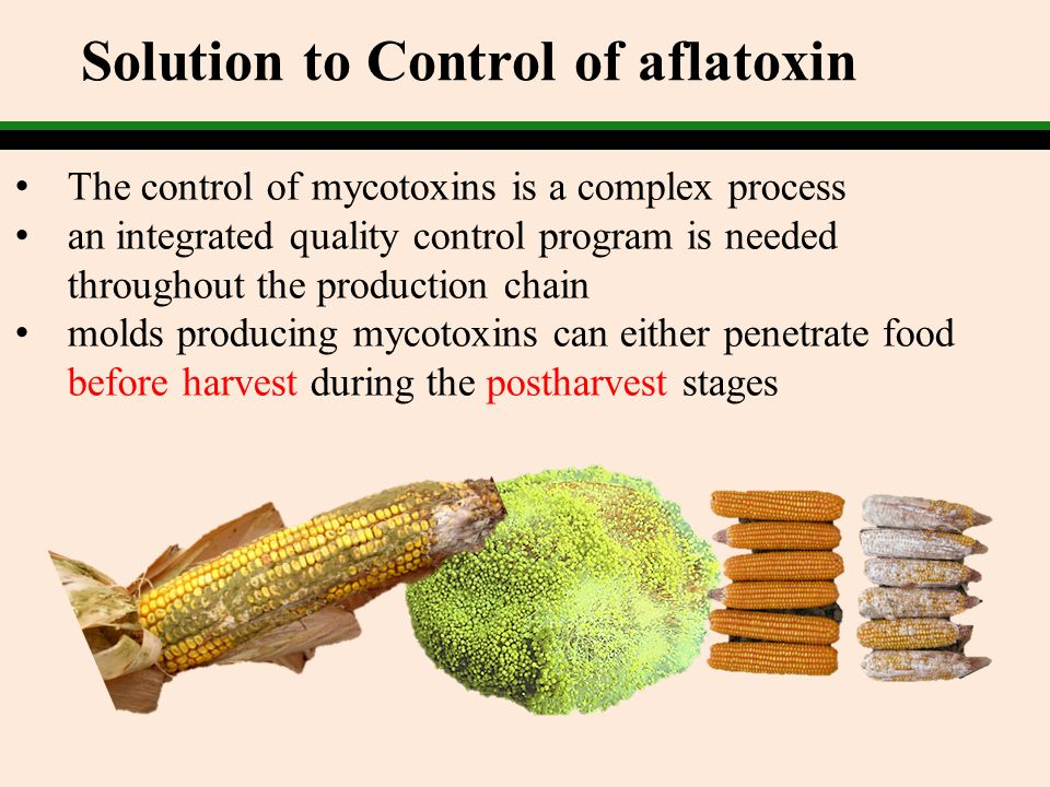 Solution to Control of aflatoxin