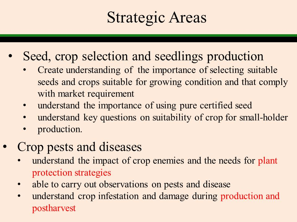 Strategic Areas Seed, crop selection and seedlings production