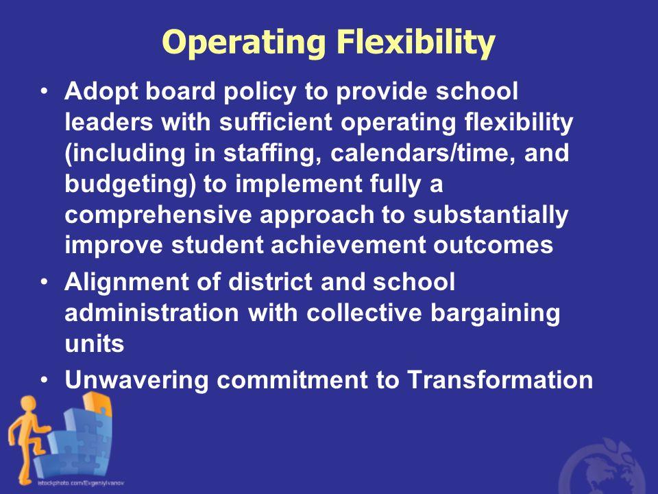 Operating Flexibility