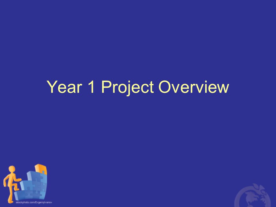 Year 1 Project Overview