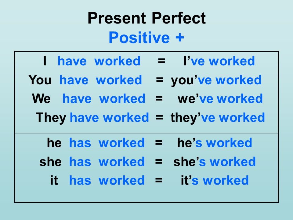 Present Perfect Positive +