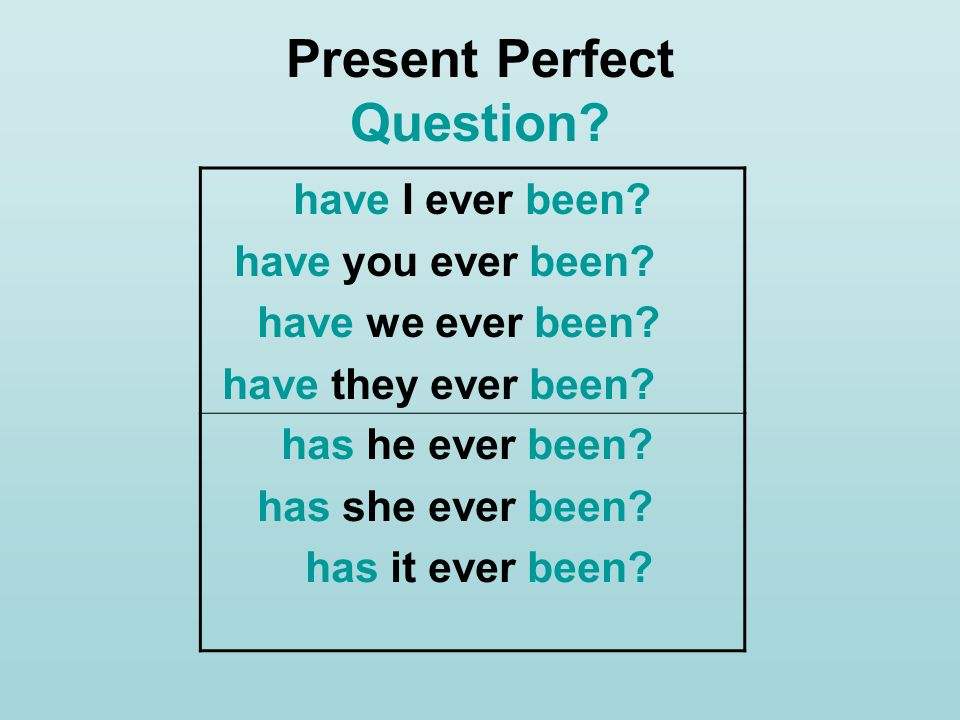 Present Perfect Question