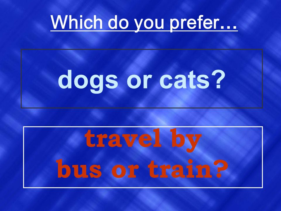 Which do you prefer… dogs or cats travel by bus or train