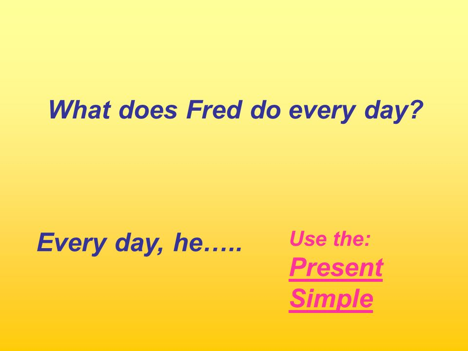 What does Fred do every day