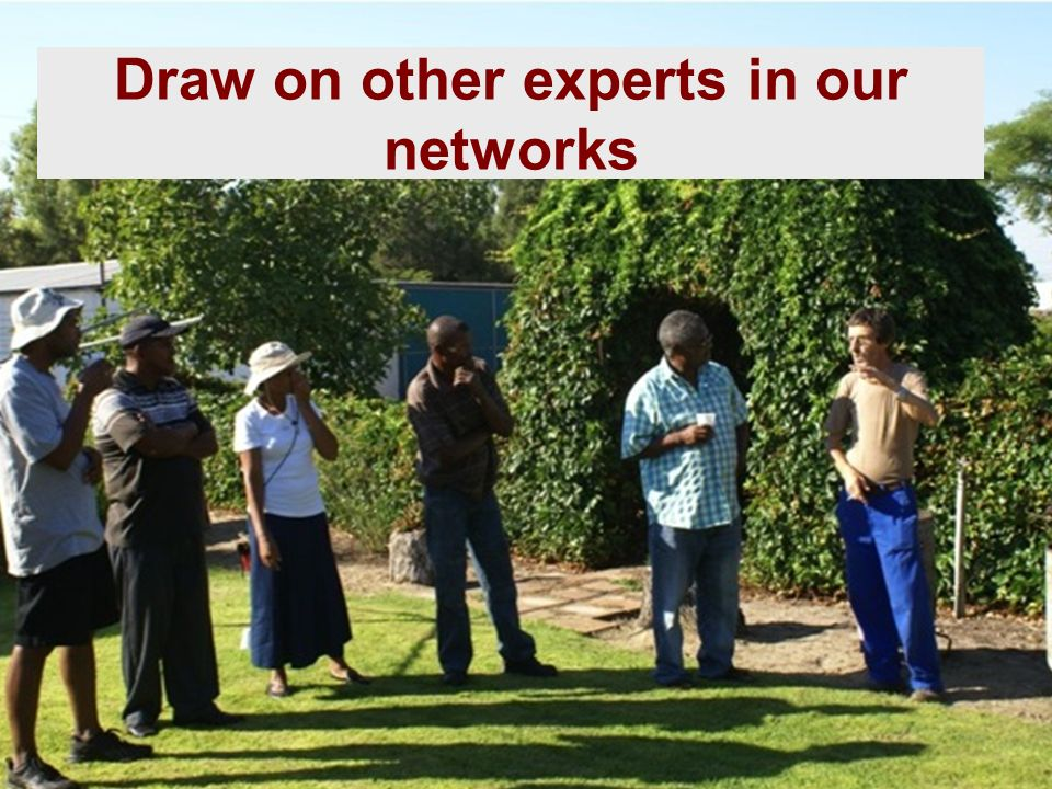 Draw on other experts in our networks