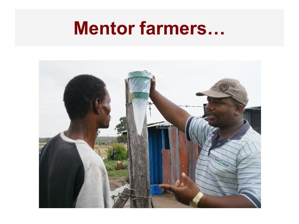 Mentor farmers…