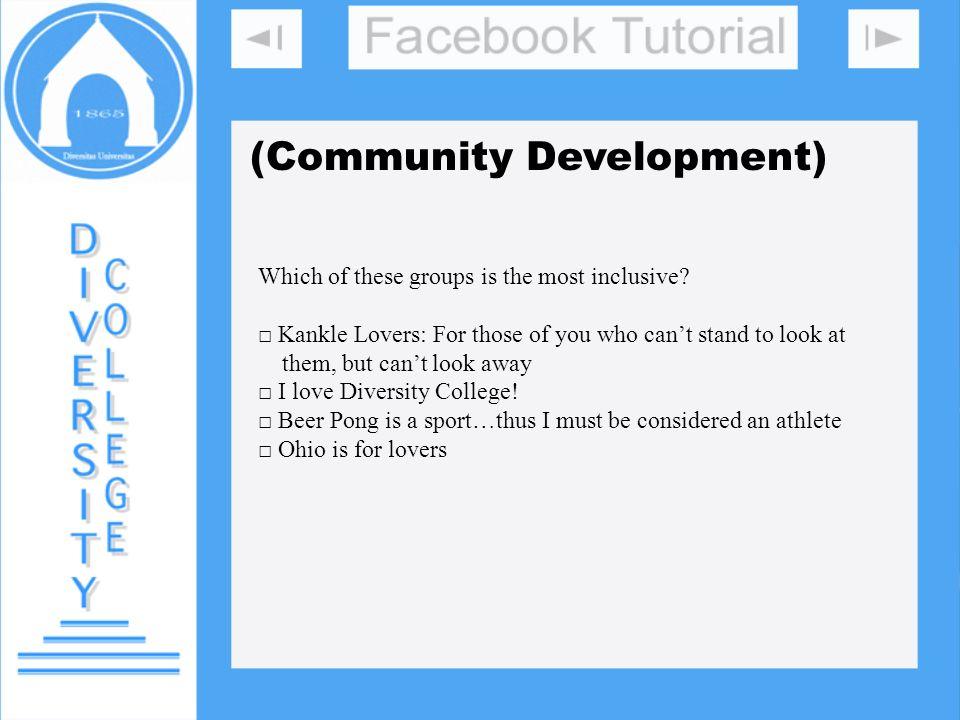 DIVERSITY COLLEGE (Community Development)